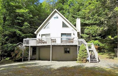 Wallenpaupack Lake Estates Single Family Home For Sale