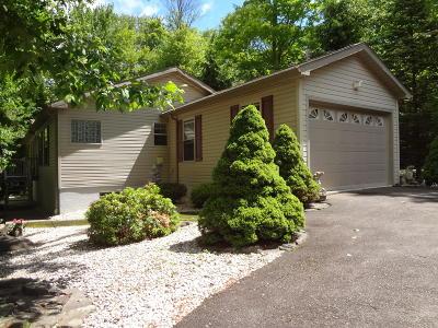 Lake Ariel Single Family Home For Sale: 2869 Granite Ct