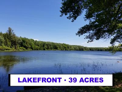 Wayne County Residential Lots & Land For Sale: Spruce Lake Rd