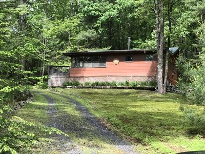 Dingmans Ferry Single Family Home For Sale: 103 Orchid Dr