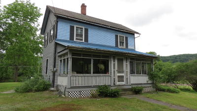 Narrowsburg Single Family Home For Sale: 43 3rd Ave
