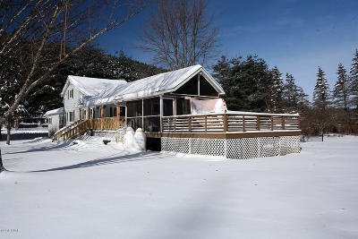 Equinunk Single Family Home For Sale: 1774 Pine Mill Rd