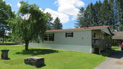 Cochecton Single Family Home For Sale: 20 Cochecton Rd