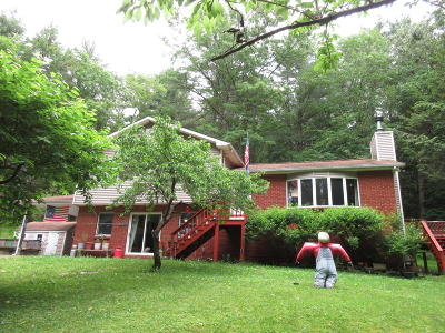 Hawley Single Family Home For Sale: 1063 Towpath Rd