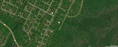 Sunrise Lakes Residential Lots & Land For Sale: Lot 48 Sunset Dr