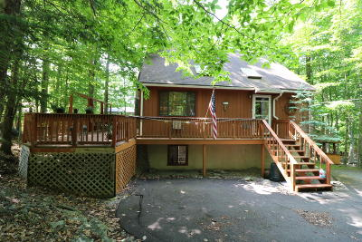 Wallenpaupack Lake Estates Single Family Home For Sale: 1141 Mustang Rd