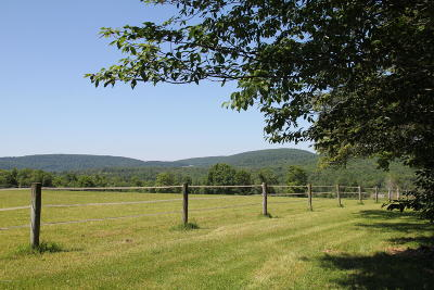Pleasant Mount Residential Lots & Land For Sale: Bethany Tpke