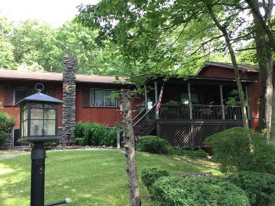 Shohola Single Family Home For Sale: 244 Bee Hollow Rd