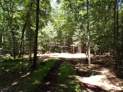 Hawley Residential Lots & Land For Sale: 3 Spruce St
