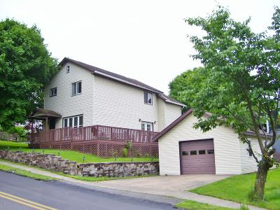 Carbondale Single Family Home For Sale: 93 Wayne St