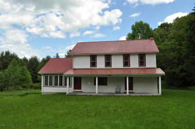Pleasant Mount Single Family Home For Sale: 368 Dix Rd