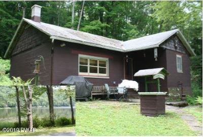 Wayne County Single Family Home For Sale: 331 Starlight Lake Rd
