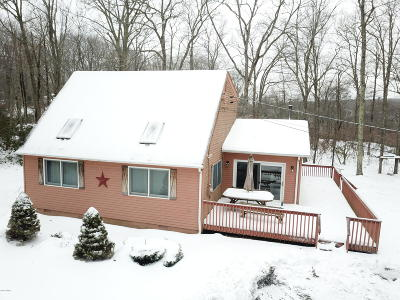 Milford Single Family Home For Sale: 187 Conashaugh Trl