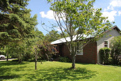 Pleasant Mount Single Family Home For Sale: 388 Great Bend Tpke