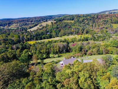 Wayne County Single Family Home For Sale: 169 McKnight Rd