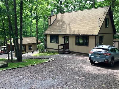 Wallenpaupack Lake Estates Single Family Home For Sale: 1111 Mustang Rd