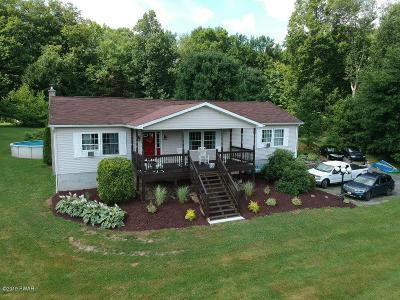 Lake Ariel Single Family Home For Sale: 206 Eisenhauer Rd
