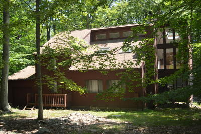 Wallenpaupack Lake Estates Single Family Home For Sale: 1023 Silver Spring Rd