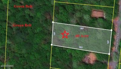 Lackawaxen Residential Lots & Land For Sale: 178 Pebble Rock Rd