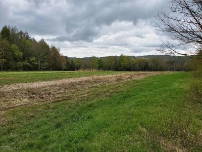 Lake Ariel Residential Lots & Land For Sale: Ledgedale Rd