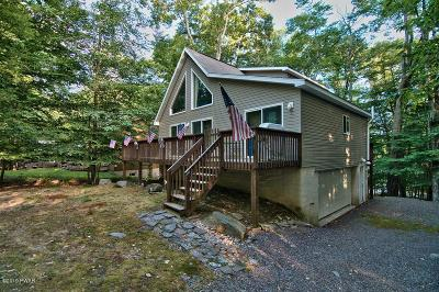 Single Family Home For Sale: 1073 Wallenpaupack Dr