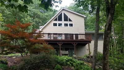 Milford PA Single Family Home For Sale: $205,000