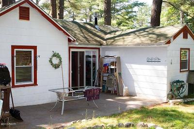 Narrowsburg NY Single Family Home For Sale: $37,000