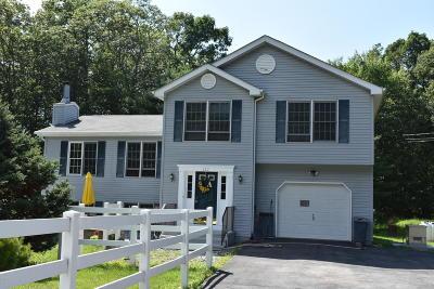 Shohola Single Family Home For Sale: 117 Mountain Laurel Ln