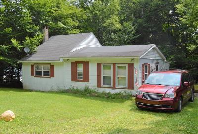 Wayne County Single Family Home For Sale: 238 N South Turnpike Rd