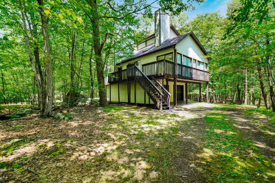 Pike County Single Family Home For Sale: 117 Rustic Way