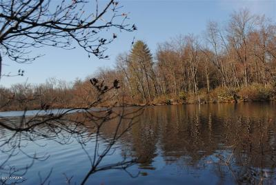 Wayne County Residential Lots & Land For Sale: 10A Chestnut Lake Dr
