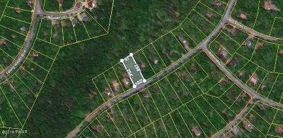 Masthope Residential Lots & Land For Sale: 193 Eagle Rock Road