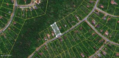 Lackawaxen Residential Lots & Land For Sale: 193 Eagle Rock Road