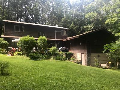 Wayne County Single Family Home For Sale: 643R Park St
