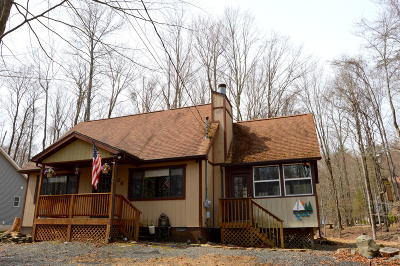 Wallenpaupack Lake Estates Single Family Home For Sale: 1068 Indian Dr
