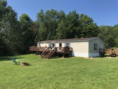 Wayne County Single Family Home For Sale: Weidner St