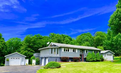 Honesdale Single Family Home For Sale: 167 Weniger Hill Rd