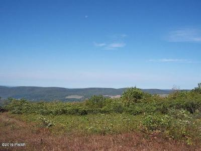 Carbondale Residential Lots & Land For Sale: Mountain Rd