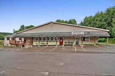 Wayne County Commercial For Sale: 1315 Hamlin Hwy