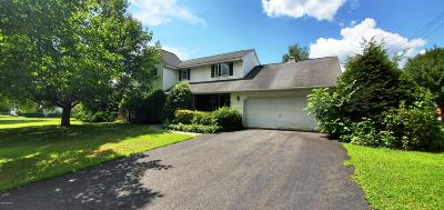 Milford Single Family Home For Sale: 316 W Ann St