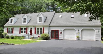 Honesdale Single Family Home For Sale: 129 Laurel Hill Estates