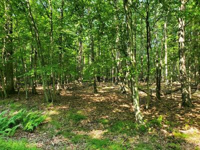 Tink Wig Mountain Lake Estates Residential Lots & Land For Sale: Lot 799 Tink Wig Dr