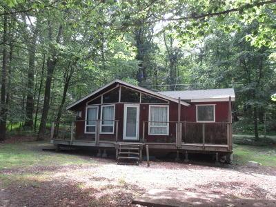 Single Family Home For Sale: 132 Juniper St