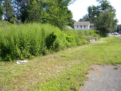 Residential Lots & Land For Sale: Wellwood Avenue