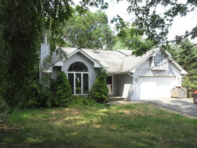 Milford Single Family Home For Sale: 206 Vandermark Dr