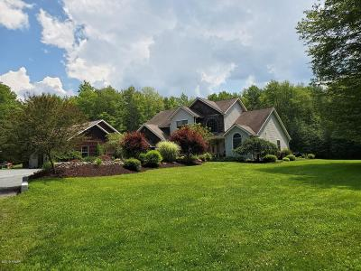 Pike County Single Family Home For Sale: 218 Rt 447
