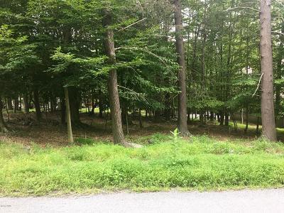 Wallenpaupack Lake Estates Residential Lots & Land For Sale: 52 Evergreen Dr
