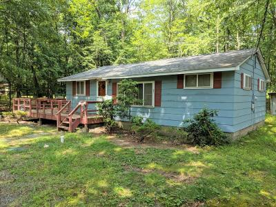 Dingmans Ferry Single Family Home For Sale: 102 Red Pine Rd