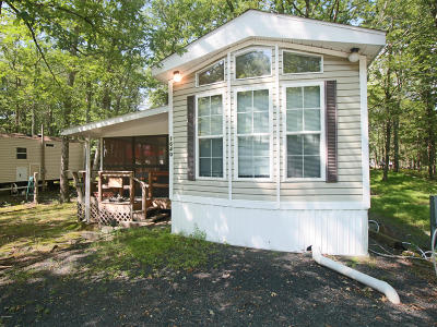 Milford Single Family Home For Sale: 113 Stag Run
