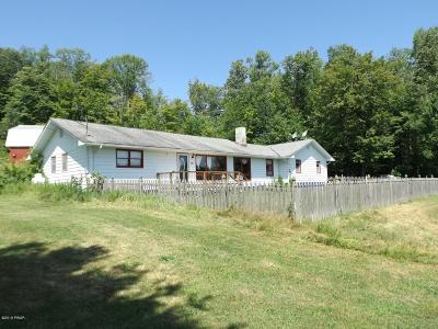 Equinunk Single Family Home For Sale: 551 Rutledgedale Rd